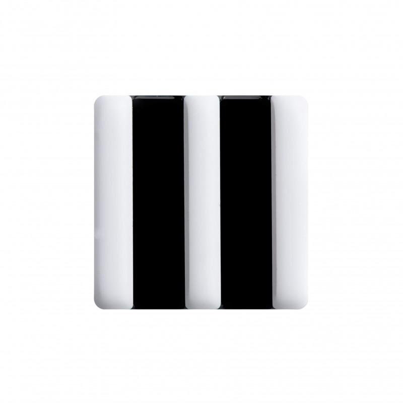 Light Zebra